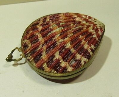Vintage Seashell Coin Purse Trinket Box