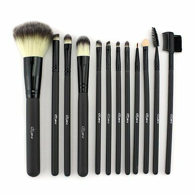 Glow 12 piece Makeup Brush Set