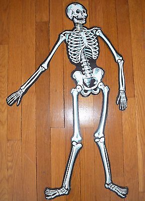 VINTAGE 1950s HALLOWEEN CARDBOARD SKELETON MADE IN USA THE BEISTLE COMPANY 33 IN