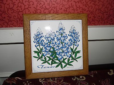 Texas Bluebonnet State Flower Trivet Polly's Paint Box 2000