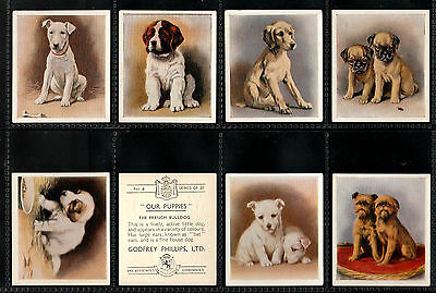 "Phillips 1936 Intriguing ( Dog ) Full 30 Card Set """"  Our Puppies  """""