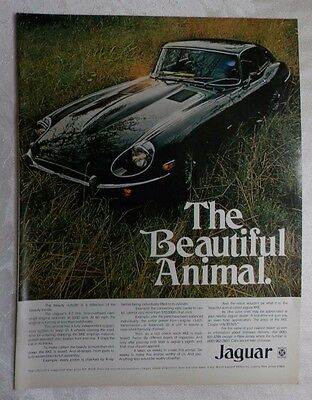 1970 Jaguar XKE 4.2 Litre Magazine Advertisement 2