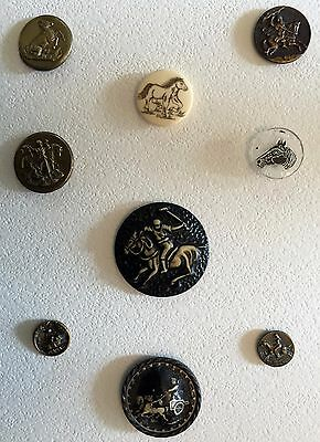 Fabulous Card Of 9 Antique & Collectible Buttons With Horses Equestrians Ivoroid