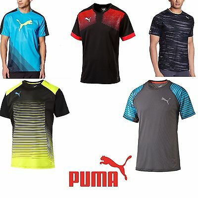 New Puma Men Tee Sports Training football Running GYM T-Shirt Crew Neck Drycell