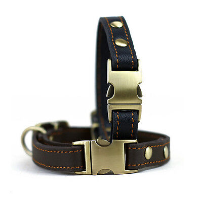 Leather Dog Neck Collar Cat Puppy Collar Pet Supplies 24-36 CM For Small Dog