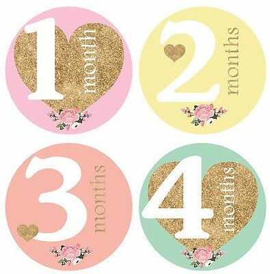 baby girl monthly stickers  mom new born party baby shower  1 to 12 months