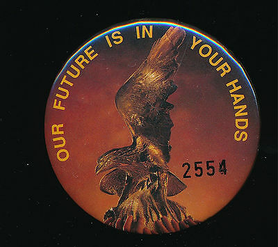 Hawthorn Hawks Football Club Our Future is in Your Hands Pin Badge