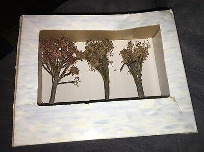 Boyds Bearly-Built Villages~FALL HAS FLUNG ARBORETUM COLLECTION~3 Trees~Town