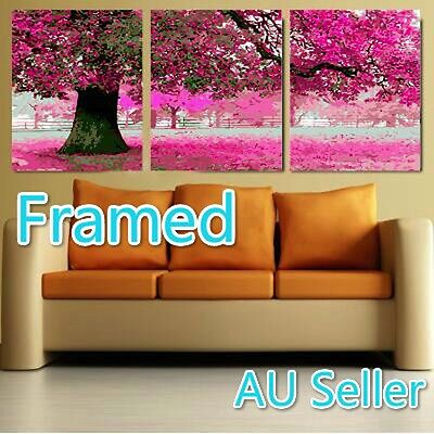 Framed Set of Three 40*50cm Painting By Number Kit F3P008 Cherry Tree S3 AU OZ