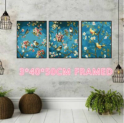 Framed Set of Three 40*50cm Painting By Number Kit F3P014 Birds & Trees S3 AU OZ