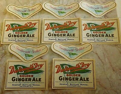 5 Vintage Dartmouth Ginger Ale Soda Labels Newport, NH w/ Necks