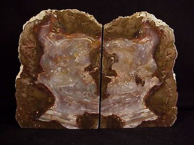 "~Rw~  Large  Unique  ""thunderegg Bookends""   ~ ~  Oregon"