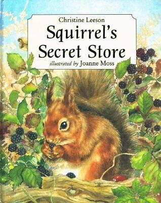 Christine Leeson,Squirrel's Secret Store,Little Tiger Press
