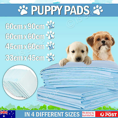 New Puppy Pet Dog Indoor Cat Toilet Traning Pads Super Absorbent Easy Clean