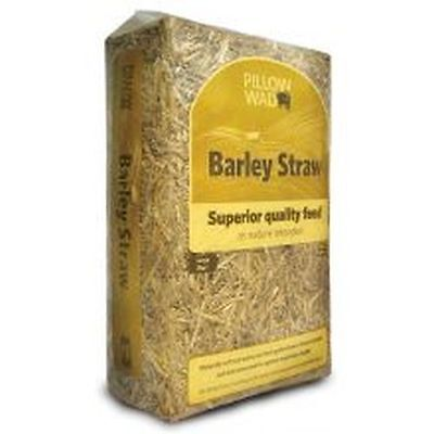 Pillow Wad Barley Straw 2kg PWS01