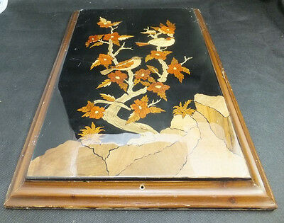 Inlaid Wood Marquetry Picture - Rare Vintage Bird Picture Laquered