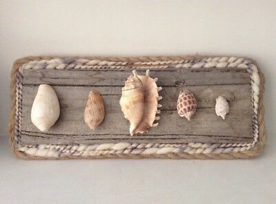 Handcrafted by Artist Seashell Art on Reclaimed Wood Mount - Unique Home Decor