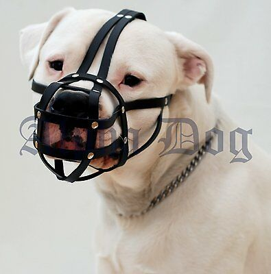 Leather Muzzle for Amstaff and Pit bull and similar Length: 9 cm Circuit:33cm