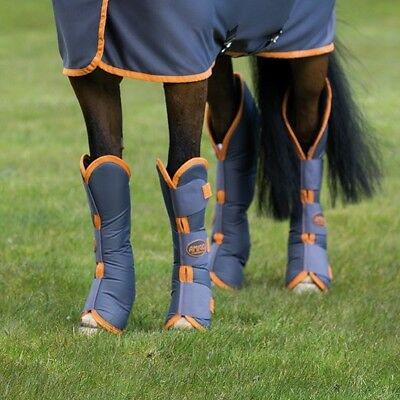 Horseware Amigo Travel Boots Excaliber/Orange