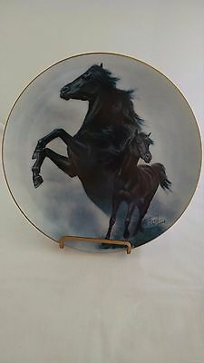 Black Stallion Plate Fred Stone American Artists 1989