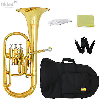 Aklot Intermediate Eb Alto Horn Gold Silver Plated Mouthpiece for Musical