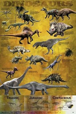 Dinosaur Poster Educational Wall Chart  Satin Matt Laminated New