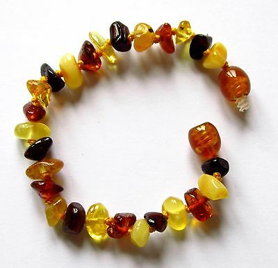 Natural Baltic amber bracelet anklet child amber baby to teen sizes multi beads