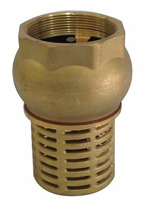 "1"" - 2"" BSP Female Check Foot Valve Suction Brass Non Return Valve for Pump"
