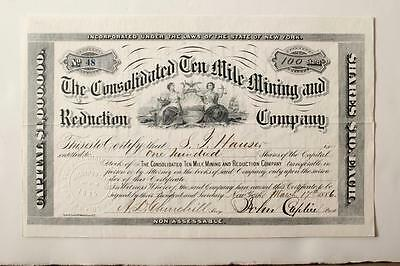 COLORADO  ~ Consolidated 10 Mile Mining and Reduction Co. Stock Cert No. 48