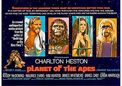 Planet of the Apes - Roddy McDowall - A4 Laminated Mini Poster