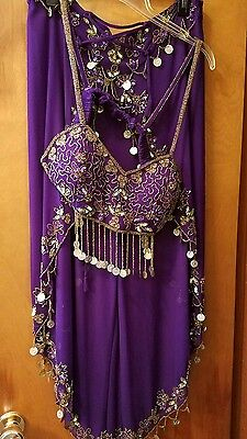 Women's Belly Dance Costume and Accessories, Large