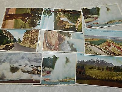 Lot of 44 1920s HHT Co. All Yellowstone National Park Postcards, Nice Condition.