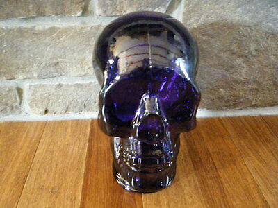 Skull Glass Head Purple Recycled Hand Made In Spain Mannequin Halloween Decor!!!