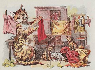 VICTORIAN ADVERTISING CARD ~ Mother Cat & Kittens, CLOTHESLINE, LEWANDO'S