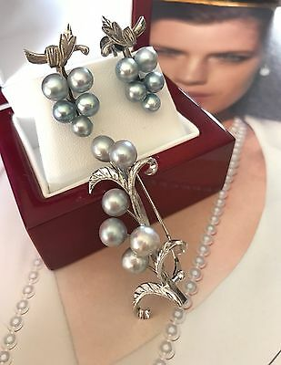 Vintage 50's Genuine Blue Tahitian Pearl Sl Screw Back Earrings And Brooch - 840