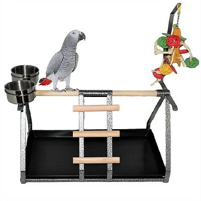 For MEDIUM and LARGE Parrot Stand Table Top Bird Perch Metal Wood Steel 2 Cups