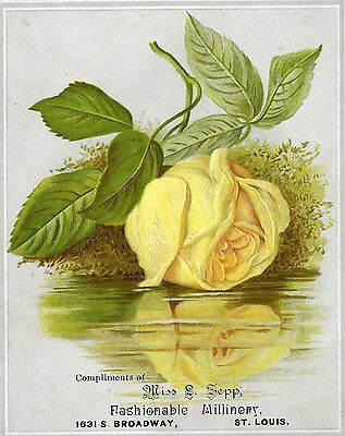 VICTORIAN TRADE CARD, YELLOW ROSE, FASHIONABLE MILLINERY, VICTORIAN, Late 1880's