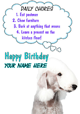 Bedlington Terrier Dog Birthday Rules Greeting card c9 A5 Personalised Greetings