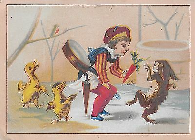 VICTORIAN ADVERTISING CARD, BAKER BOY OFFER HARE CARROT, DUCKLINGS, Late 1880's