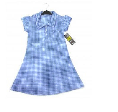 Girls Ex Store Blue Checked School Dress  Ages: 5,6,7,8,9,10,11,12 Yrs NEW