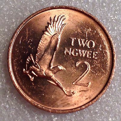 Zambia 2 Ngwee 1983 Great Coin!  #2222