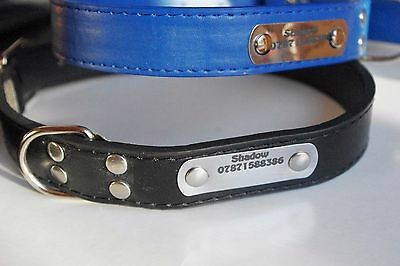 Pu Leather Pet Collar with black engraved Stainless Steel Tag Collar Dog