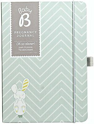 Busy B Baby B Pregnancy Journal - Grey