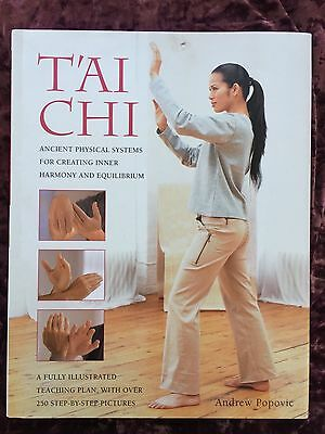 Tai chi book,250 step by step pictures.teaching plan. new