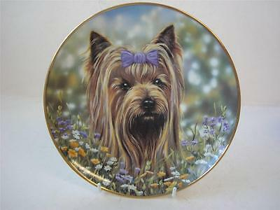 Danbury Mint The Yorkshire Terrier Plate Bow Peep