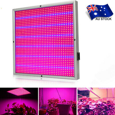 High Power 120W 1365 LEDs LED Plant Grow Light Panel Lamp Blue Red Hydroponic AU