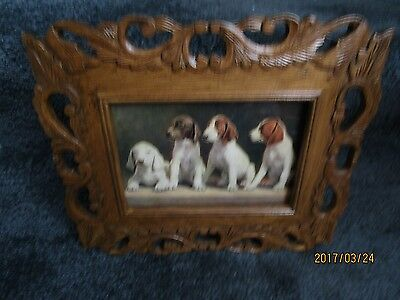 Four dogs, beagles, beautiful carved wooden frame, 1927 vintage color print.