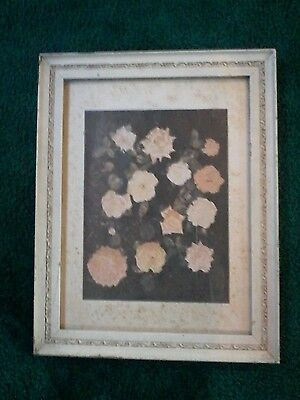 """Antique White Wooden & Gesso Frame Picture of Roses on Board 14x19"""" Cottage Shic"""