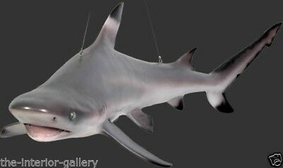 Shark - Shark Statue - Hanging Life Size Shark - Black Tip Reef Shark - 4 FT