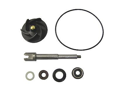 Piaggio X9 500 Evolution (ABS) 2003-2007 Water Pump - Repair Kit (Set)